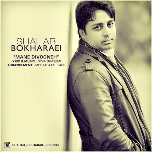 Shahab Bokharaei - Dele Divoone