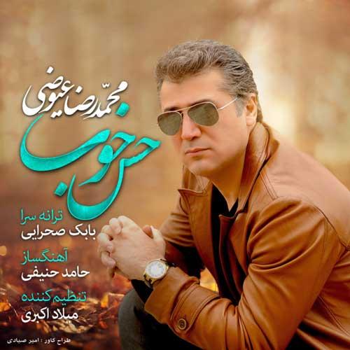 Mohammadreza Eyvazi - Hesse Khoob