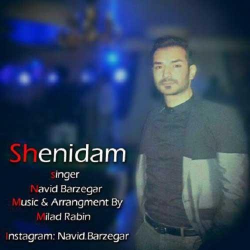 Navid Barzegar - Shenidam
