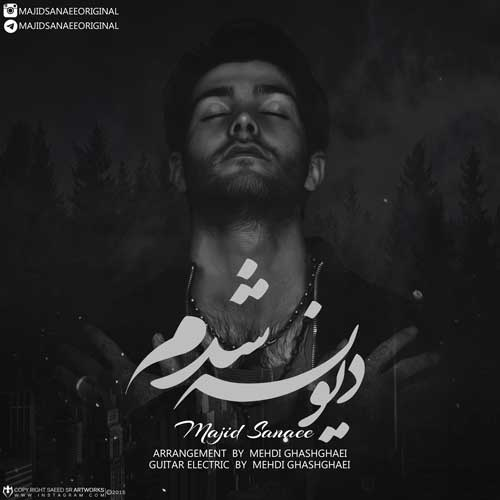 Majid Sanaee -  Divoone Shodam