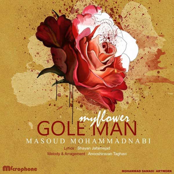 Masoud Mohammad Nabi -  Gole Man